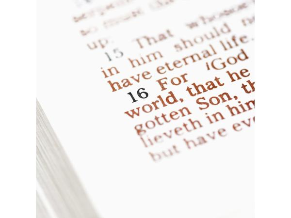 Chosen in Christ -Redemptive Inheritance of the Saints Pt1 on Sound the Shofar