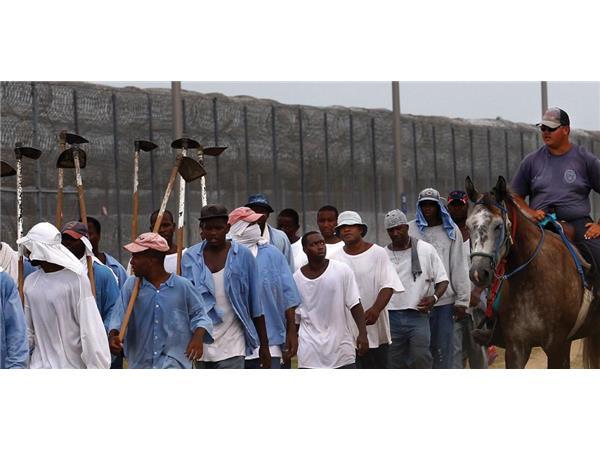 National Prison Strike; Trump lies about South Africa; Worst Week; Paris Dennard