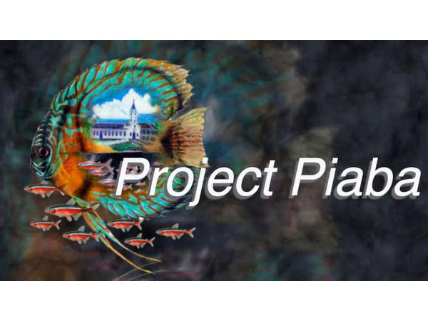 Project Piaba Buy A Fish Save A Tree