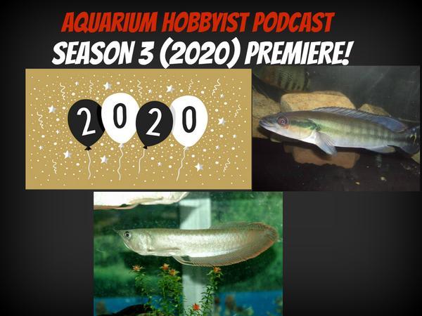 Aquarium Hobbyist Podcast Season 3 2020 PREMIERE!