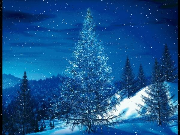 understanding and coping with the christmas blues - Christmas Blue