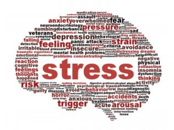 Stress And the Effects It Has On Your Mind, Body & Soul 10