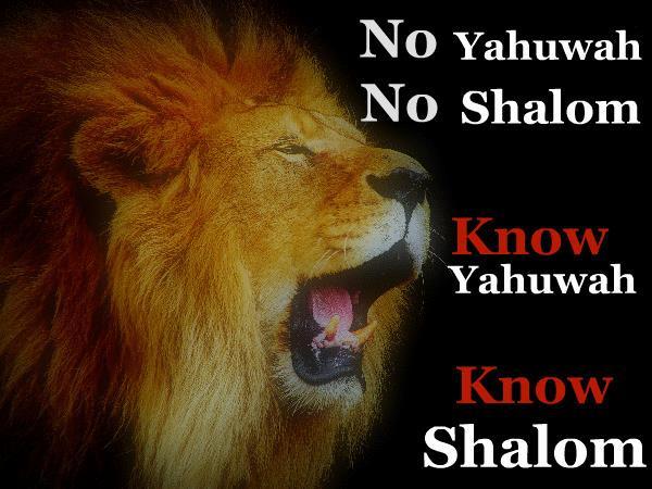 SPIRITUAL DISCERNMENT: PROPHET OR FALSE PROPHET? 08/31 by