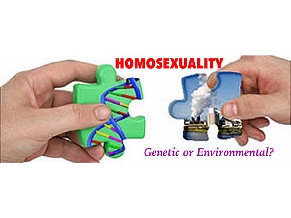 Is homisexuality genetic