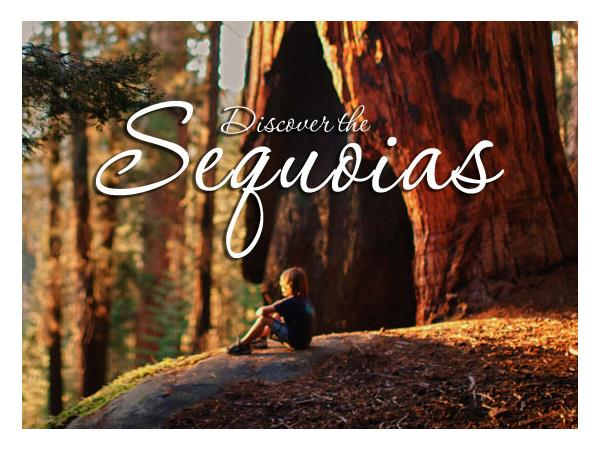 Big Blend Radio: Fall and Winter Fun in California's Sequoia Country