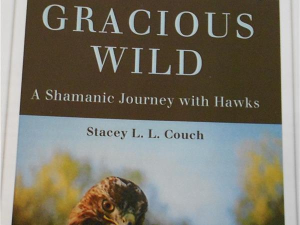 gracious wild a shamanic journey with hawks