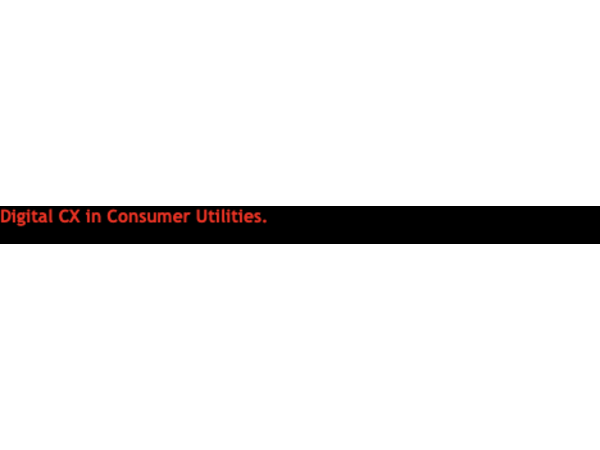 Digital CX in Consumer Utilities