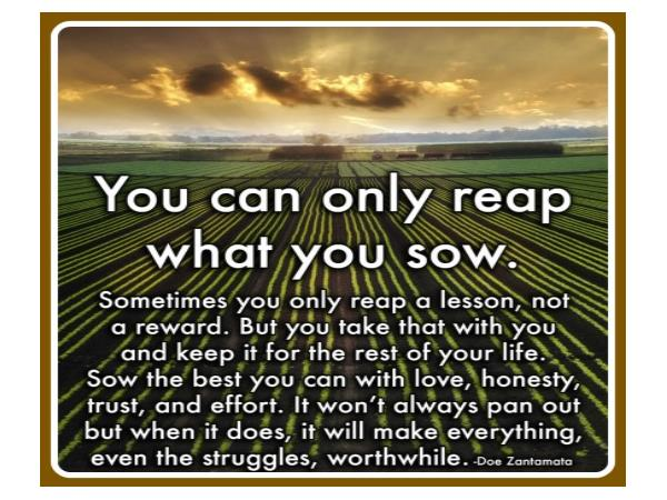 Now You Know You Reap What You Sow Part Ii 05 08 By Rise
