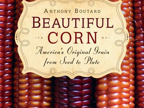 Beautiful Corn: Americas Original Grain from Seed to Plate
