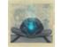 Aquarius Rizing Ninth Gate