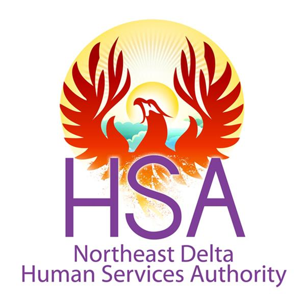 Northeast Delta HSA Transformations