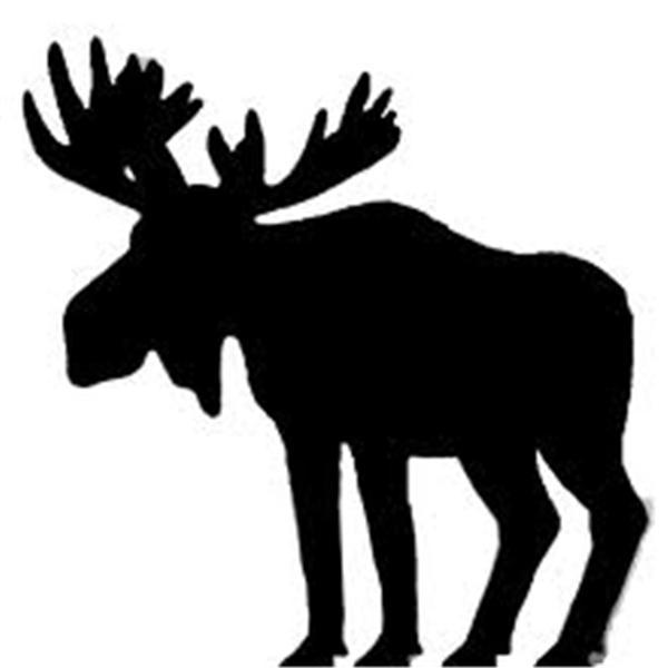Bull Moose Radio Network