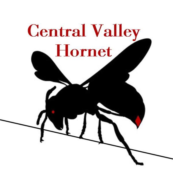 Central Valley Hornet