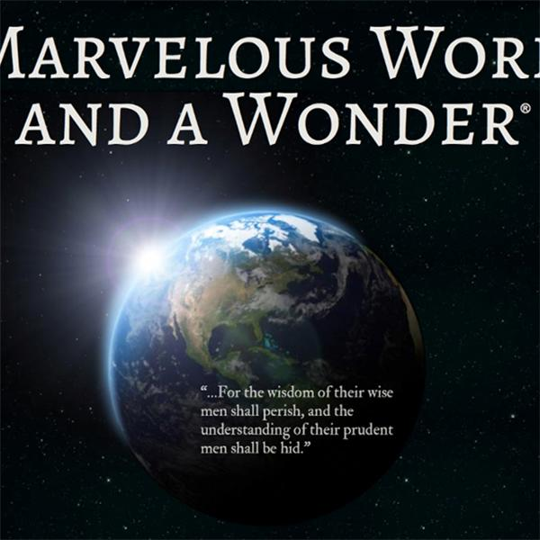 Marvelous Work and a Wonder-