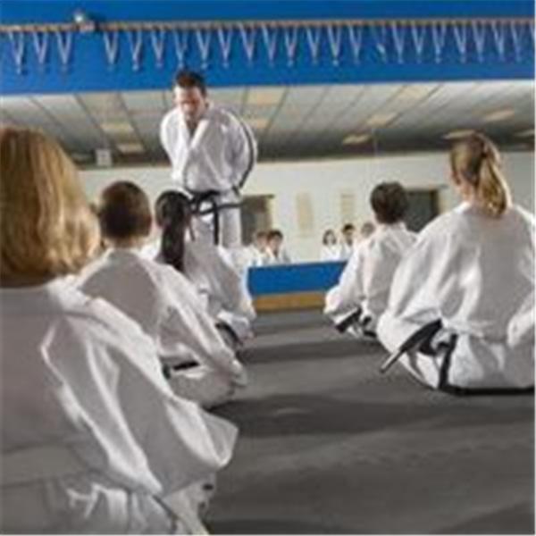 AMAA Martial Arts Masters