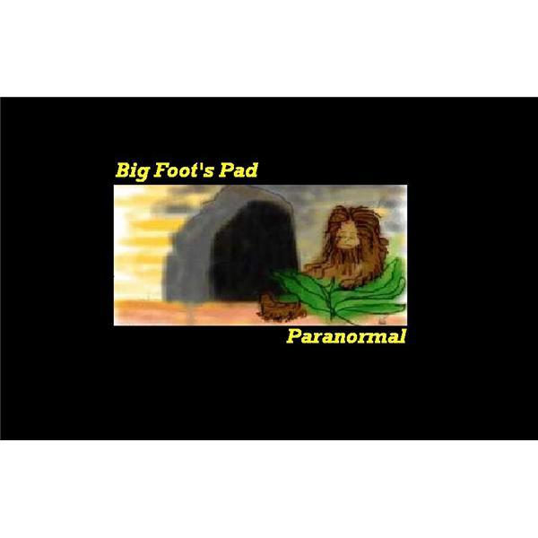 Big Foots Pad