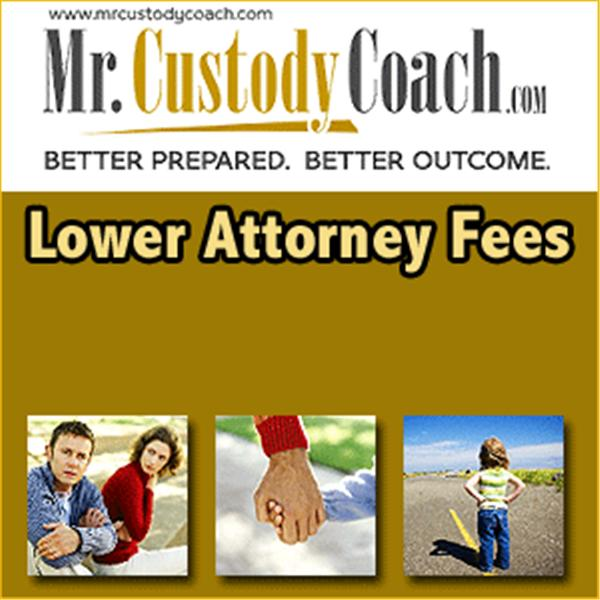 Mr Custody Coach
