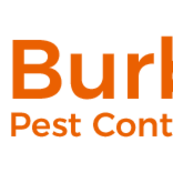 Burbank Pest Control Solutions
