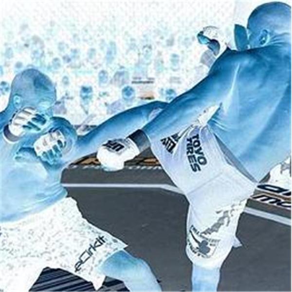 Fighting Arts Network