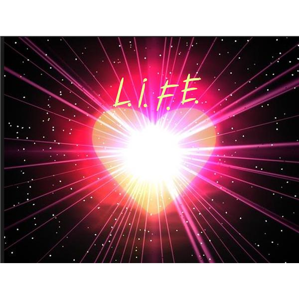 Love In Full Enlightenment