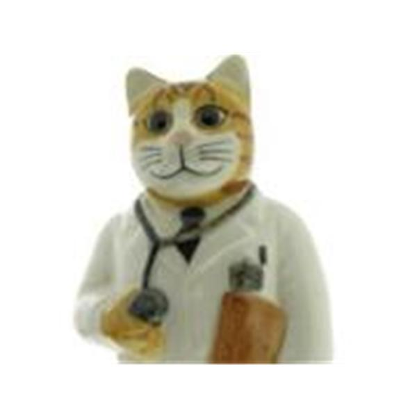 ASK DR CAT