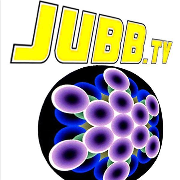 David Jubb PhD