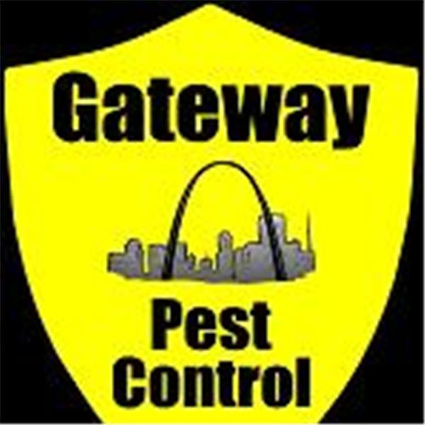 Gateway Pest