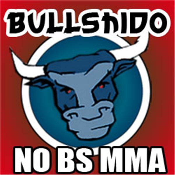Bullshido No BS MMA Martial Arts