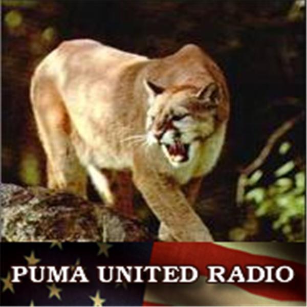 PUMA UNITED RADIO