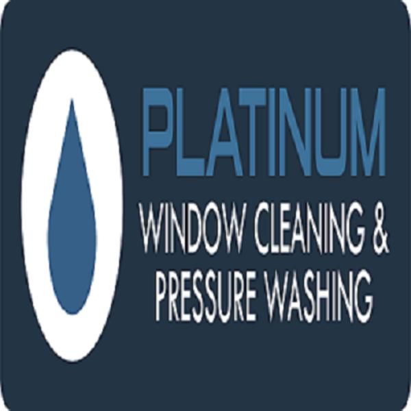Platinum Clean Windows