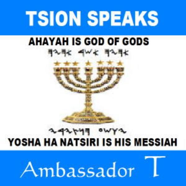 Ambassador T.