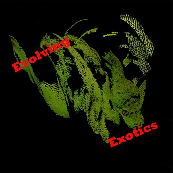 Evolving Exotics