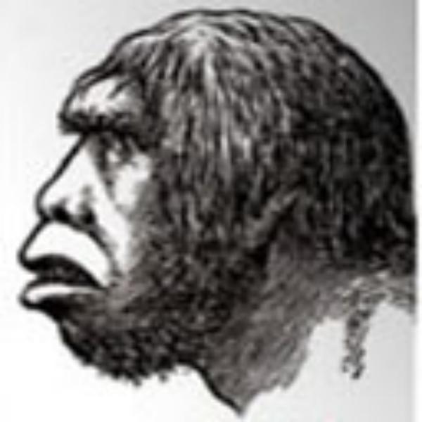 Enlightened Caveman