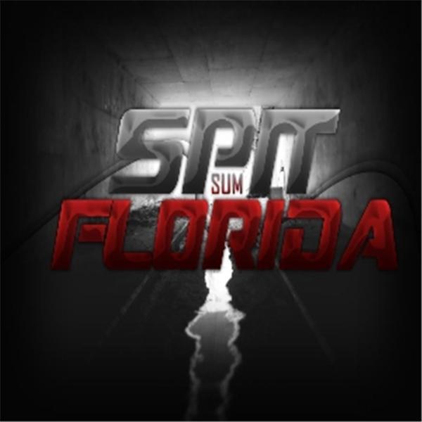 SpitSumFlorida WX Flash Buddy