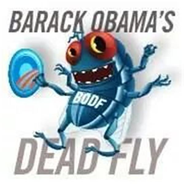 Barack Obamas Dead Fly