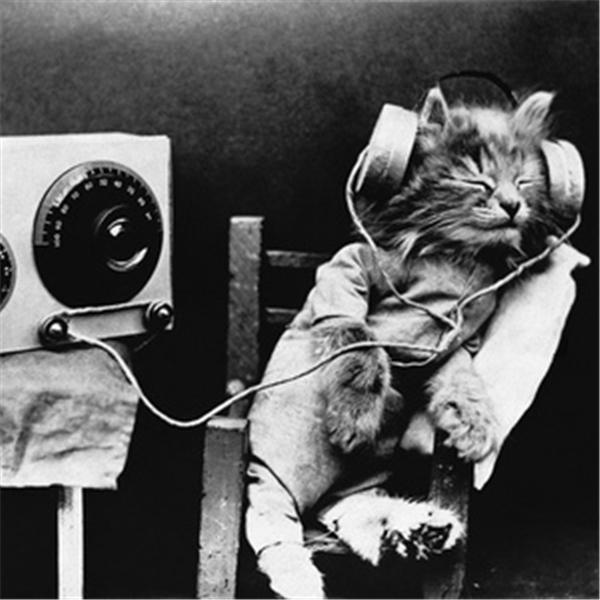 AfterDark Radio