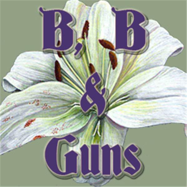 B B Guns