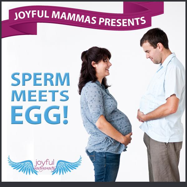 Sperm Meets Egg