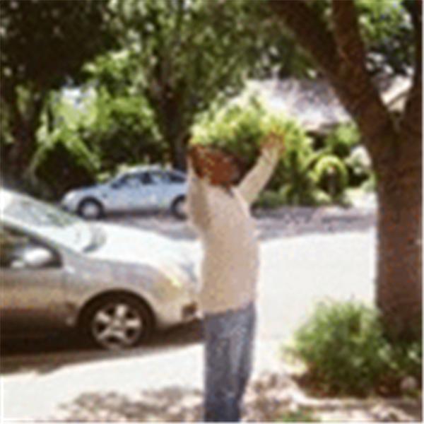 Pastor Lawrence Grace