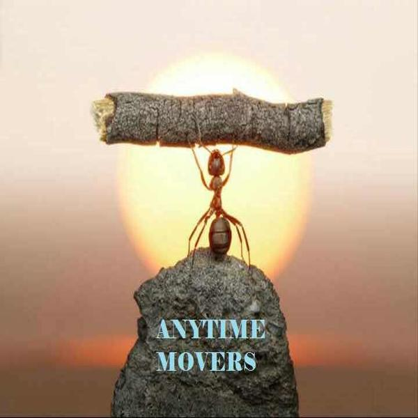Anytime Mover Company