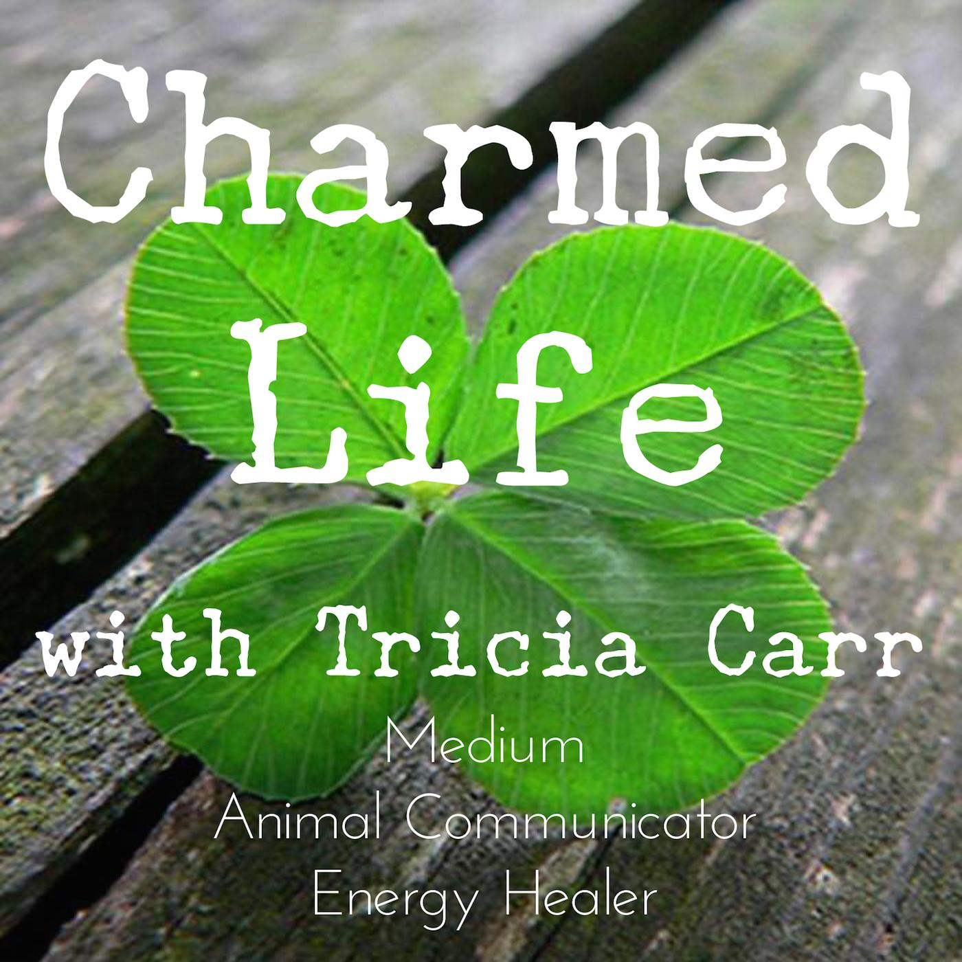 Charmed Radio Show | Listen Free on Castbox